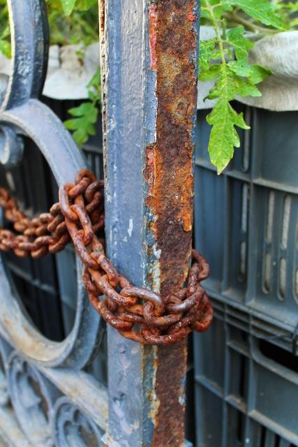 Restoring the Railings ~ July 2014 (14) (427x640).jpg